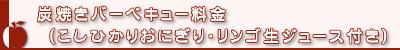 炭火焼きバーベキュー料金(こしひかりおにぎり・りんご生ジュース付き)